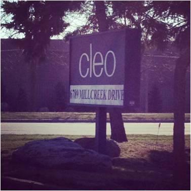Cleo Focus Group
